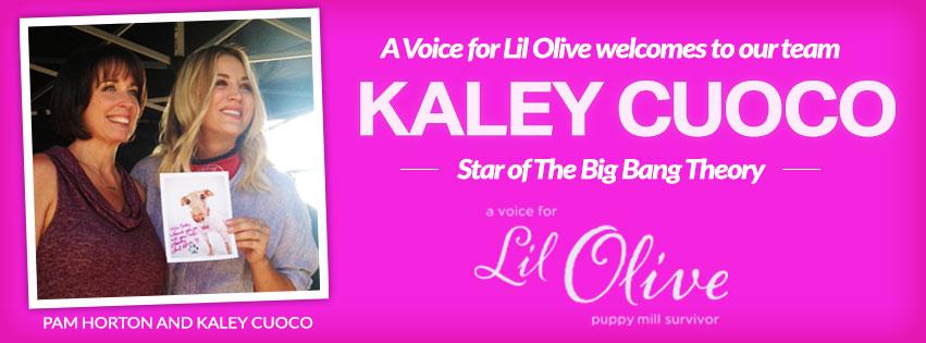 kaley_blog